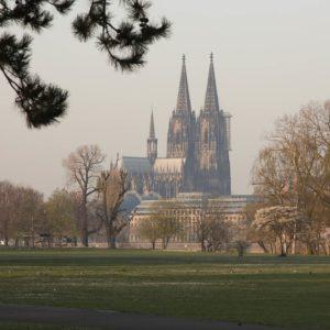 Blick zum Dom über Rhein und Rheinpark