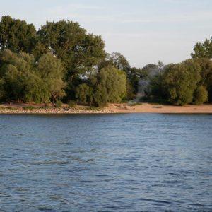 Grillwolken am Rheinufer