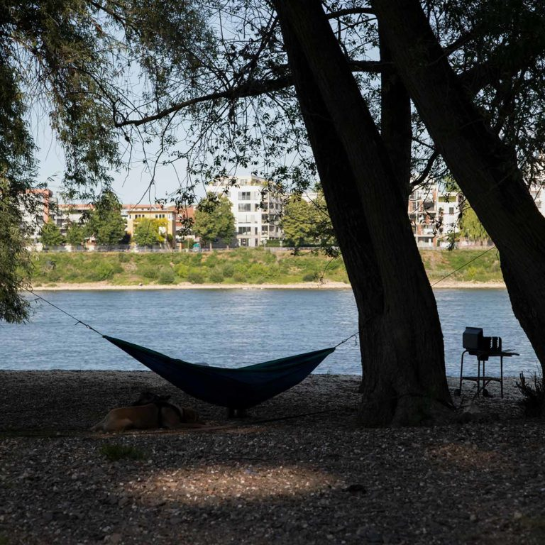 Relaxen am Rhein