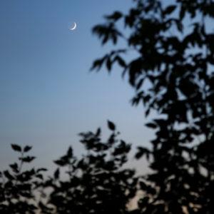 Mondsichel am Rhein